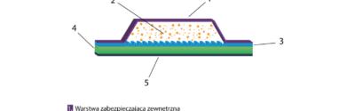 Jak działają systemy transdermalne?
