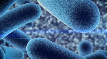 Probiotyki ginekologiczne – Czy warto je stosować?