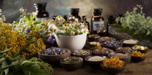 Surowce roślinne cieszą się sporym powodzeniem wśród pacjentów (fot. Shutterstock).