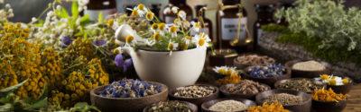 Osiem popularnych surowców roślinnych