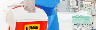 Przeszczep – najważniejsze informacje dla farmaceuty!